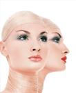 美容化妆-228