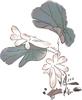 水墨画-荷花图