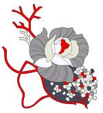 手绘时尚花卉花纹