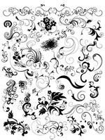 黑白动感花纹
