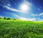 草地天空2