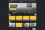 简约行业网站模板