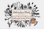 水墨风格植物素材
