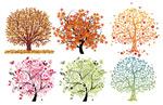 6棵漂亮的树木
