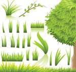 嫩绿淡雅植物
