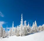 冬季美景4