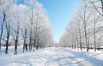 冬季美景5