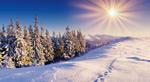 冬季美景6