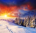 冬季美景7