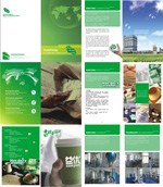万通食品企业画册