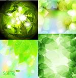 春天绿色矢量