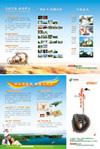旅游公司三折页