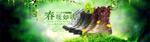 春季女鞋海报