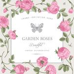 玫瑰装饰边框