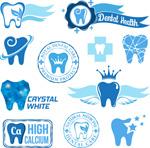 牙齿健康标签