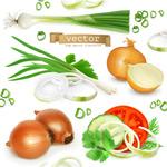 蔬果原材料矢量