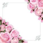 玫瑰花朵边框花边
