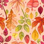 树叶组合边框背景