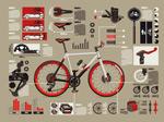 自行车信息图