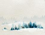 雪地和森林风景