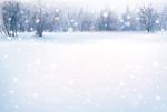 雪地森林唯美风景