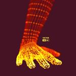 d3D发光粒子手掌