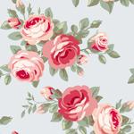 玫瑰花朵背景