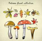 树叶和蘑菇