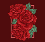 手绘玫瑰花矢量