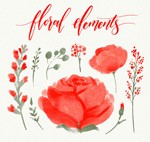 玫瑰花卉和树叶