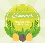 菠萝椰子促销标签