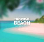 模糊热带沙滩风景