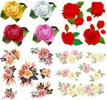 漂亮手绘玫瑰花
