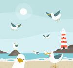 沙滩边的海鸥