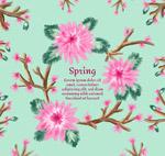 粉色春季花枝