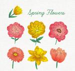 彩绘春季花朵