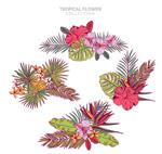手绘热带花束