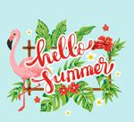 彩色你好夏季