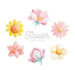 水彩绘花朵设计