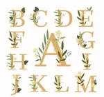 花卉装饰大写字母