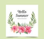 夏季扶桑花卡片