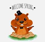 迎接春天的土拨鼠