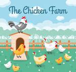 卡通养鸡场鸡群