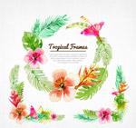 夏威夷花环和花边