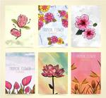 热带花卉卡片