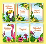 彩绘热带花鸟卡片