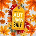 秋季销售吊牌海报
