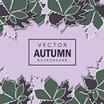纸质秋季树叶边框