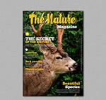 自然杂志封面
