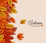 彩色秋季落叶背景